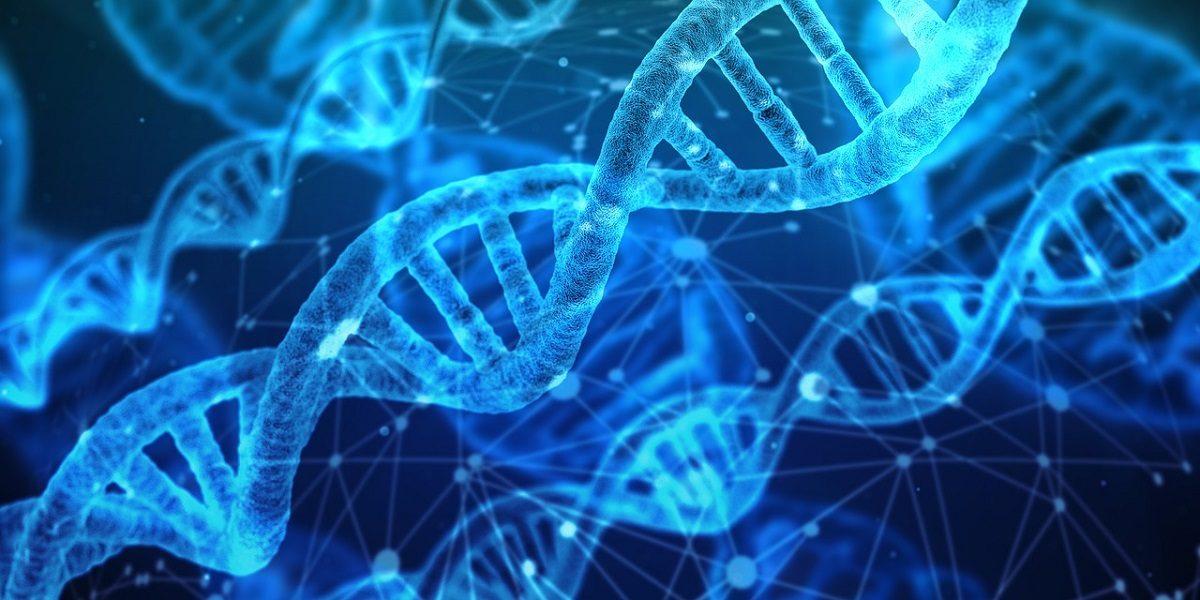 DNA tests